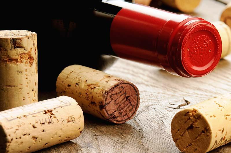 Exquisite Burgundies to Collect in 2021