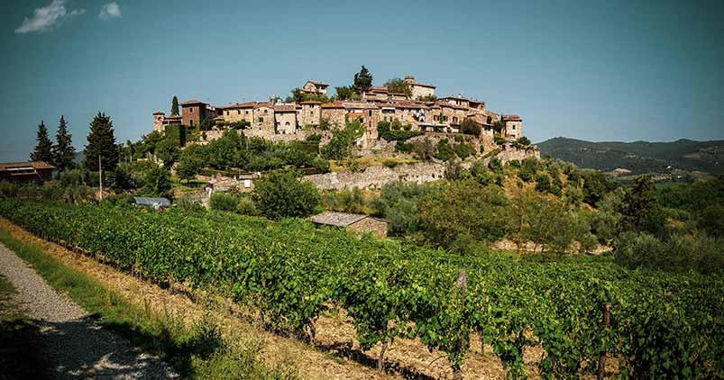 Pinot Noir Region, Italy