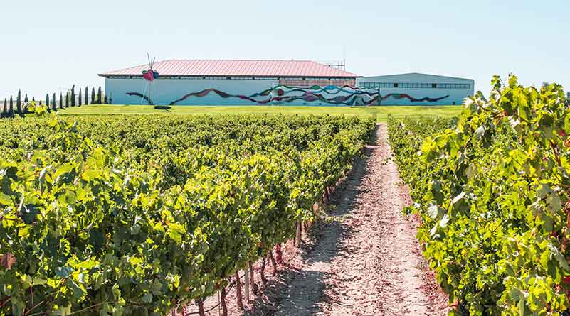 Pinot Noir Region, Spain