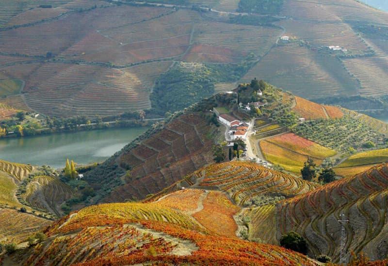 The Terroirs Of Quinta do Crasto