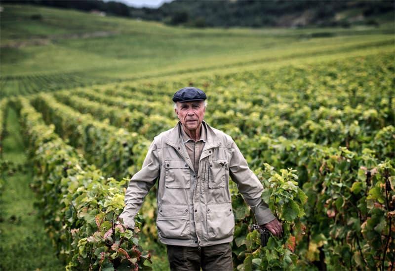 The Dean Of Burgundy Winemakers