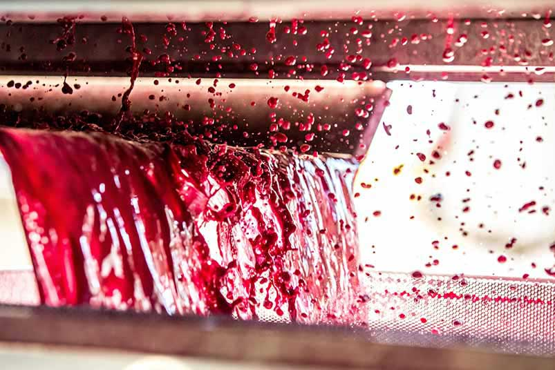 Winemaking at Chateau Cos d'Estournel
