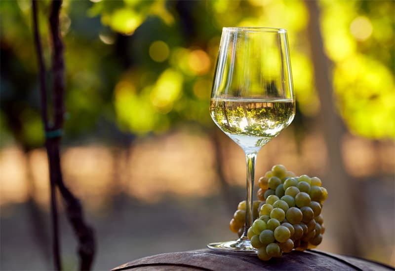 Popular White Wines By Grape Varietal Wines