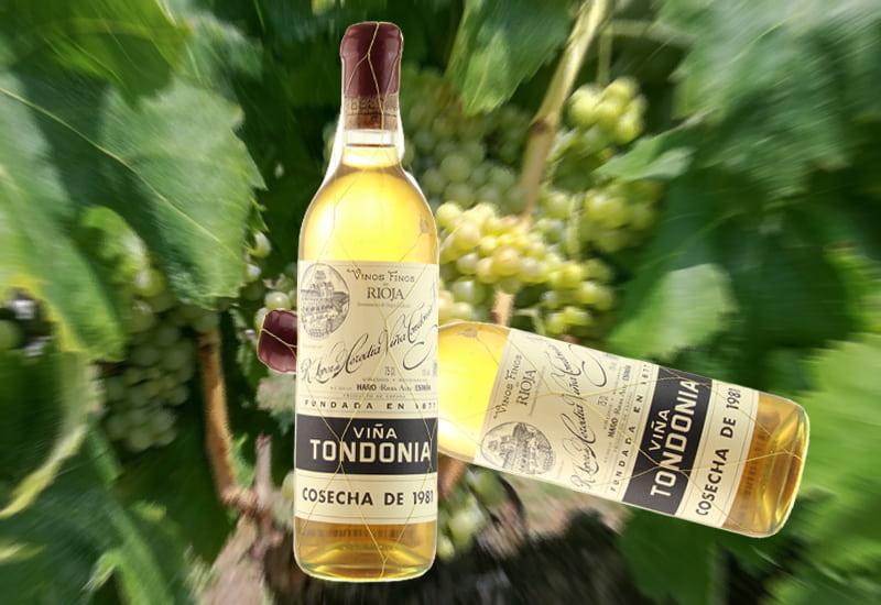 1981 R. Lopez de Heredia Vina Tondonia Gran Reserva Blanco, Rioja DOCa, Spain