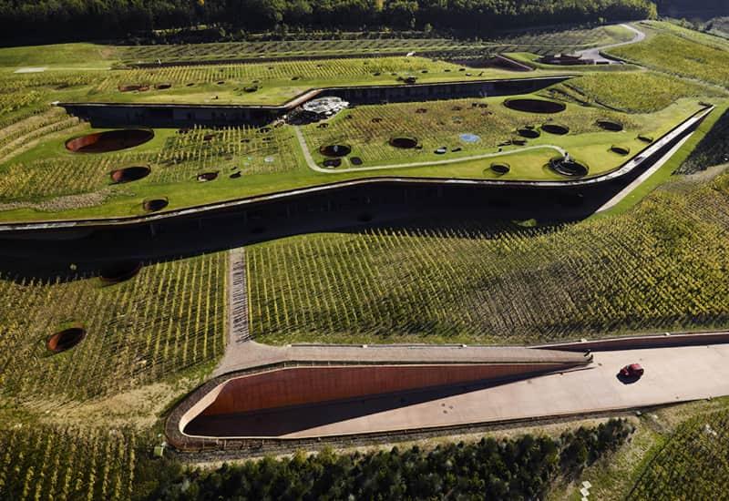 The Marchesi Antinori Vineyards And Wines