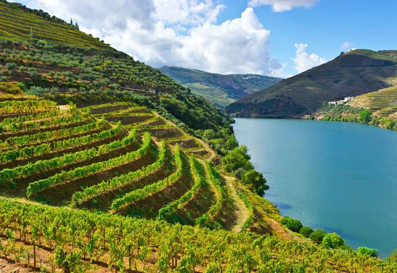 A Brief History of Vinho Verde
