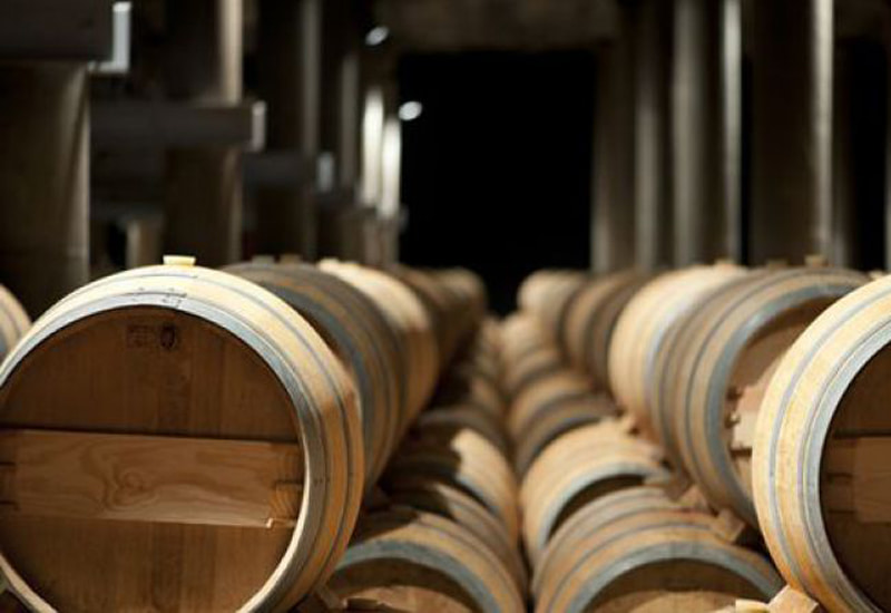 From Vine to Wine: How Are Pingus Wines Made?