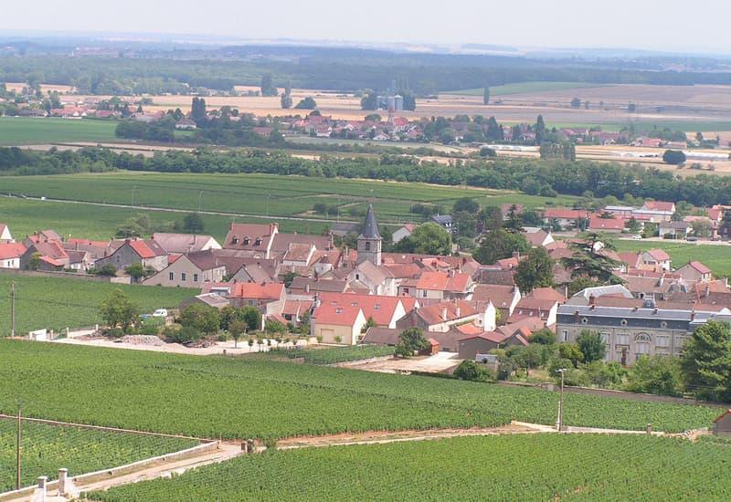 The Iconic Vosne Romanee Vineyards