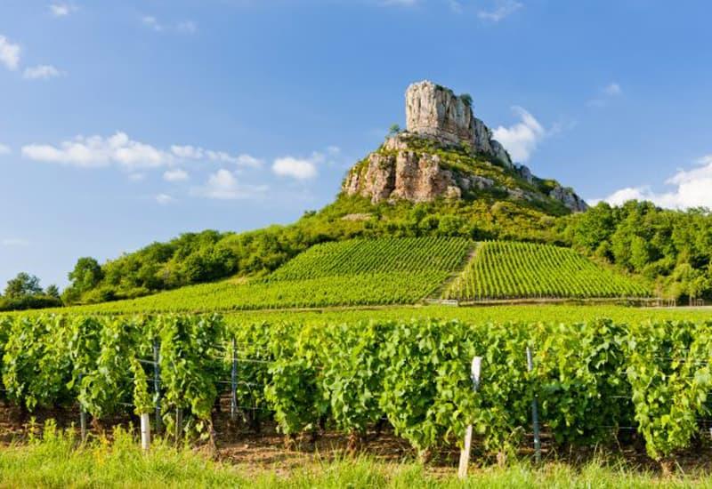 Vosne Romanee Premier Cru Vineyards