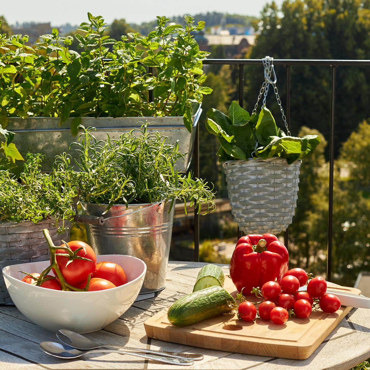 Live shopping for plants: A new venture for Blomsterlandet