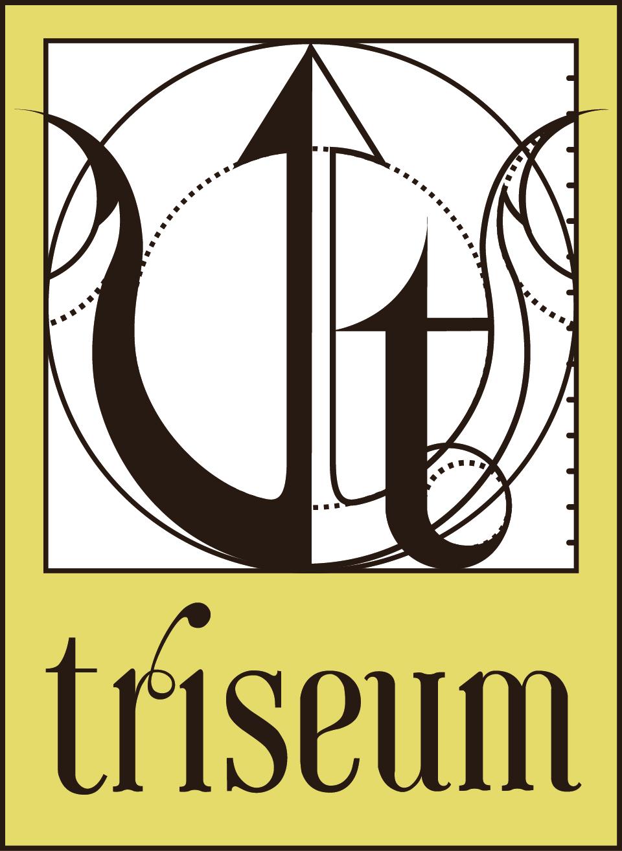 TRISEUM LLC