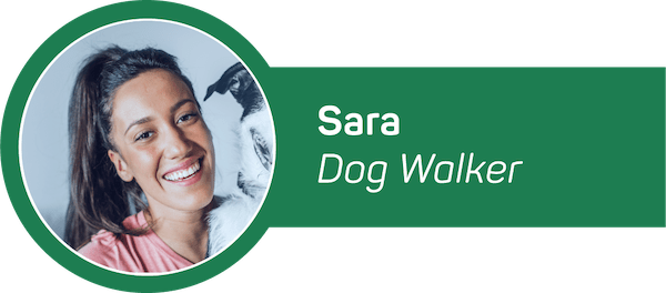 HomeAware Dog Walker Alert