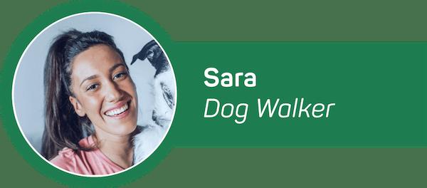 HomeAware Dog Walker Alert