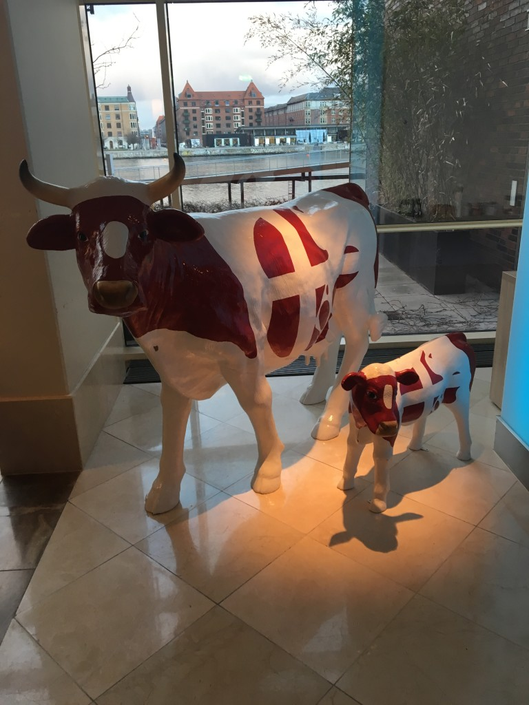 As a Texan, felt right at home with the Art Cows