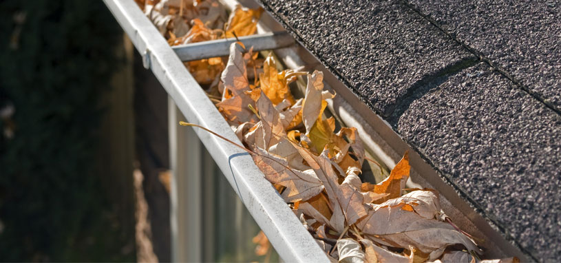 how much does gutter cleaning cost gutter filled with leaves and debris