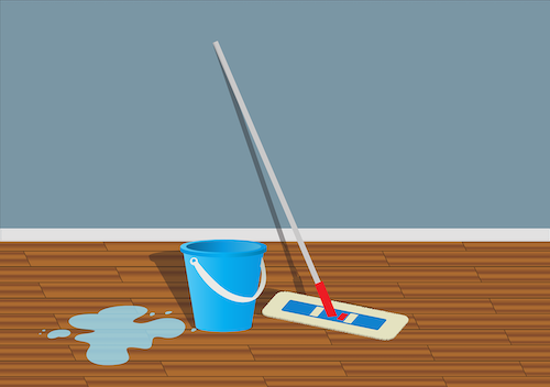 mop with bucket of clean water on hardwood floor