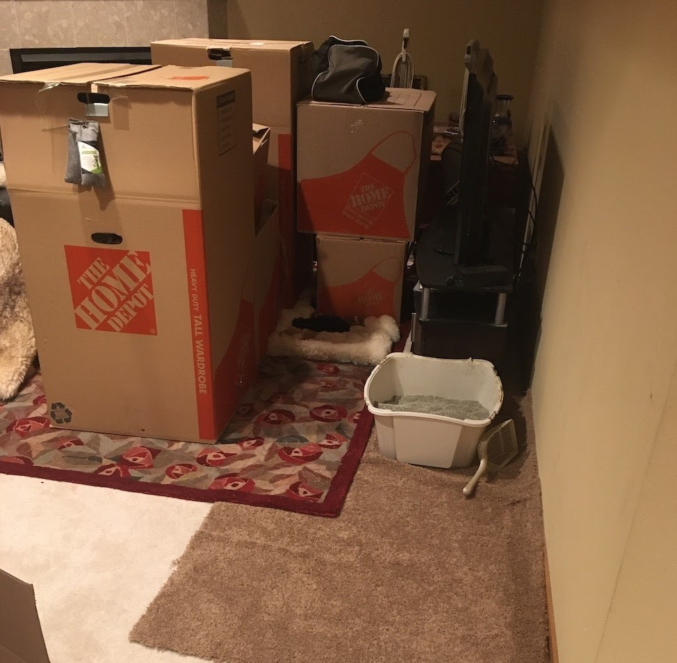 a dirty basement with storage boxes