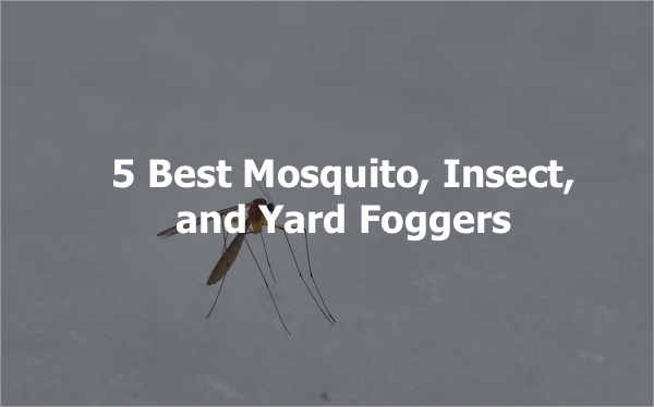 5 Best Mosquito, Insect, and Yard Foggers