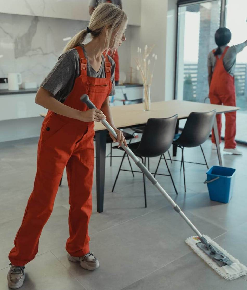 people cleaning and dusting