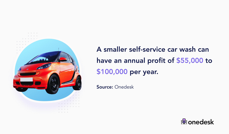 small car wash annual profit