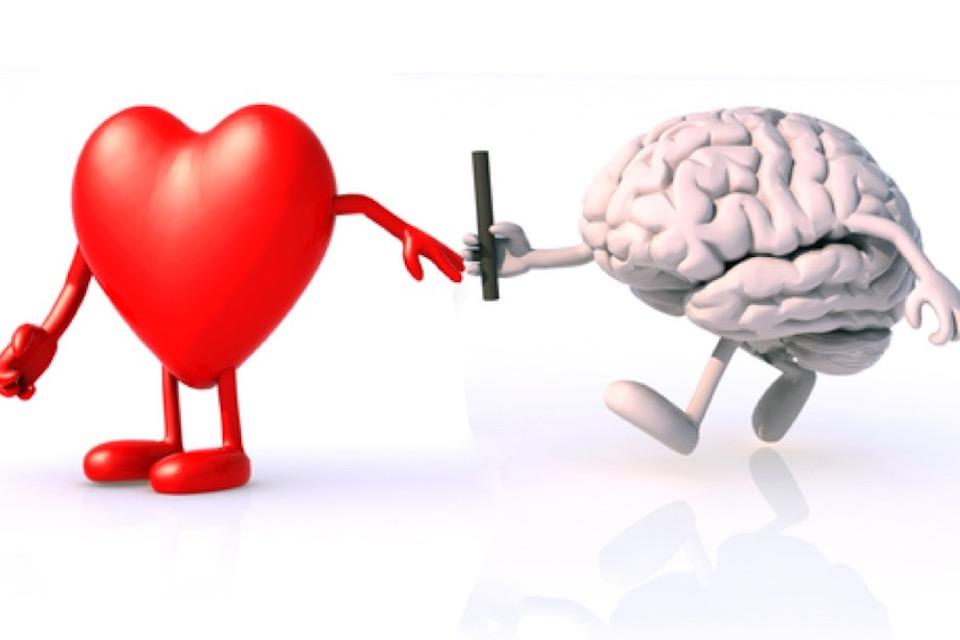organ donation vs body donation to science