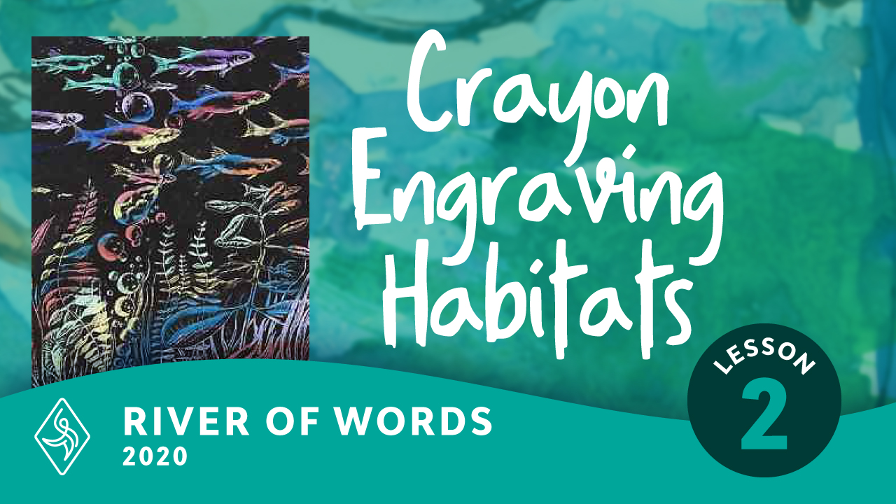 Saltmarsh, Shoreline, and Sea: Crayon Engraving Habitats