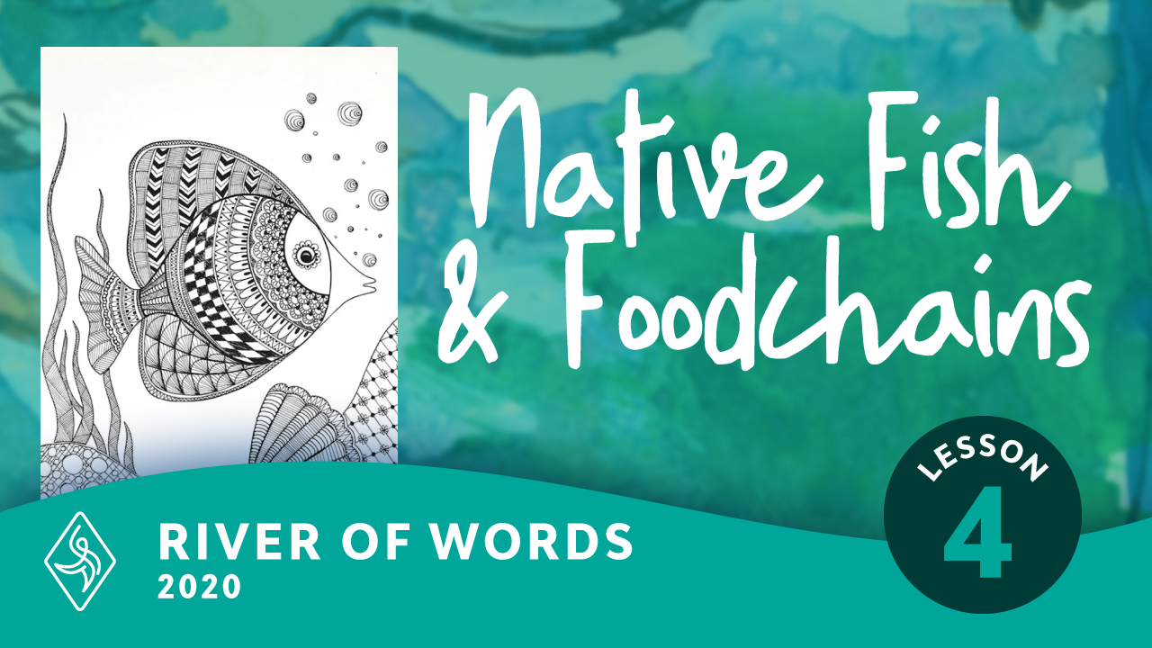Native Fish and Foodchains with Line and Pattern