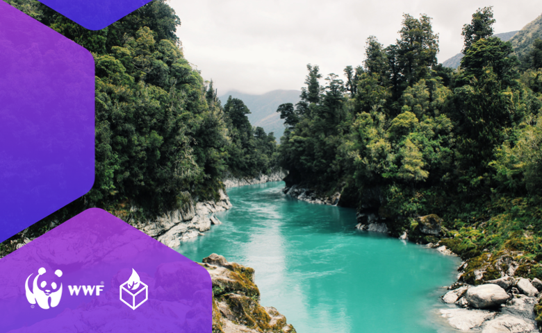 WWF Impactio Project Puts Sustainability Projects & Donors on a Kaleido Blockchain Network