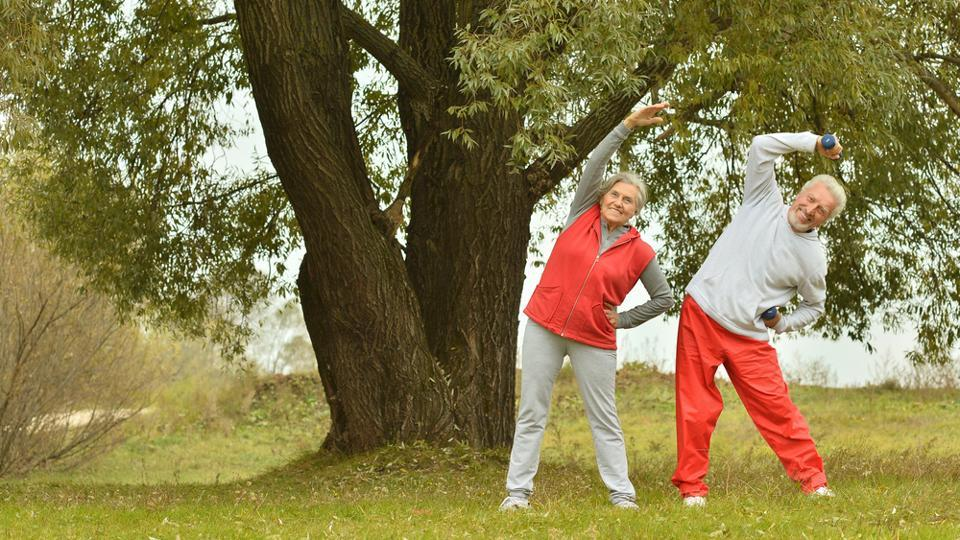 Healthy Habits for Successful Aging