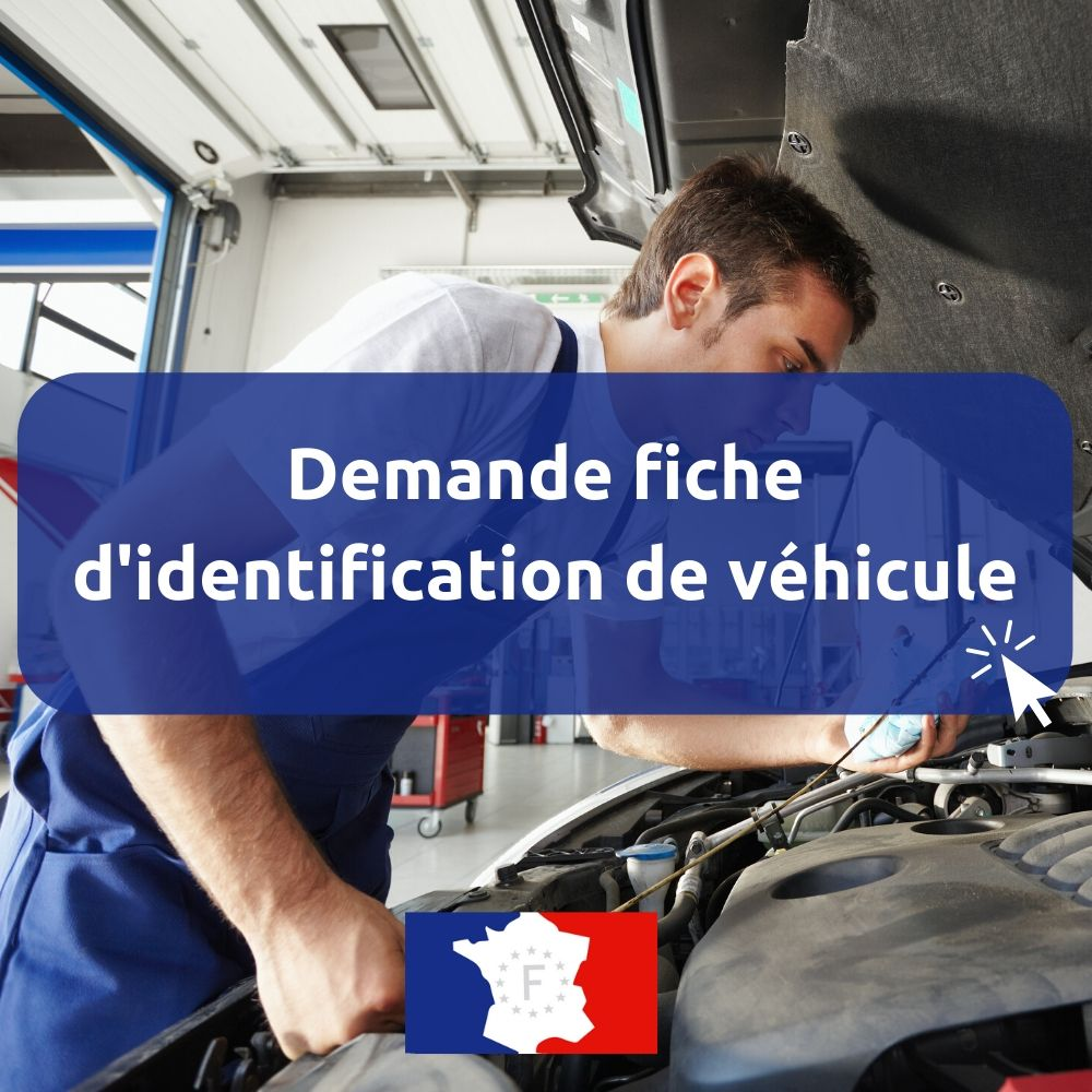demande fiche identification vehicule en ligne