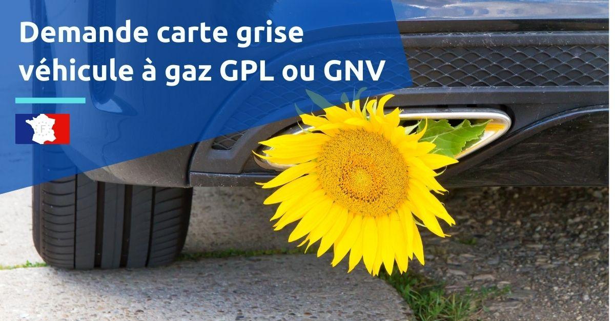 immatriculation voiture gaz
