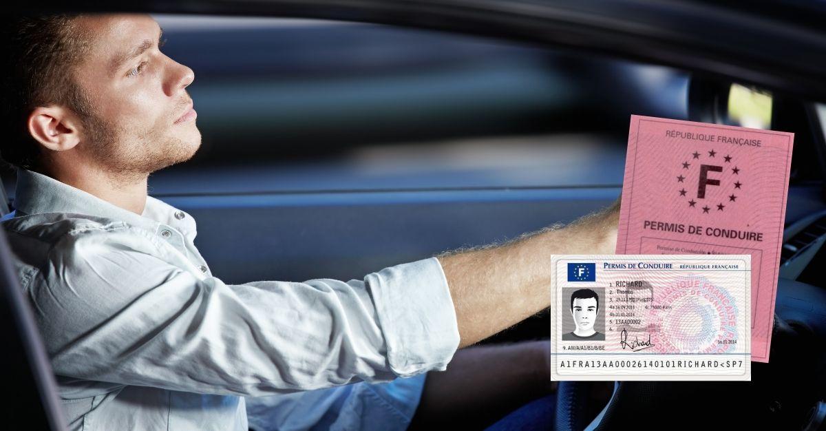 Perte permis de conduire jeune conducteur