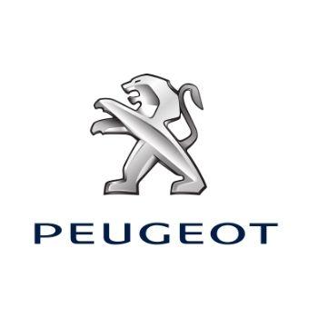 Carte grise Peugeot
