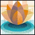 yoga or meditation classes