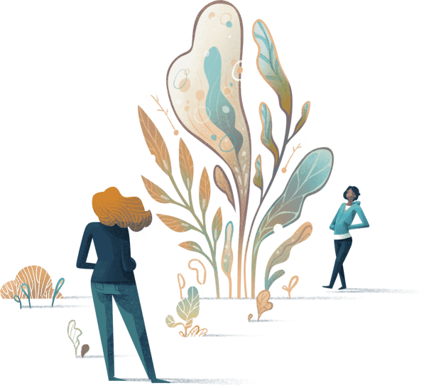 People and a large plant