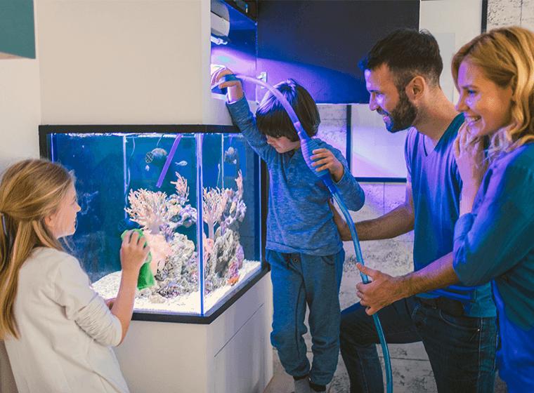 Family Draining Fish Tank