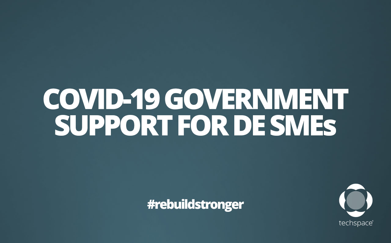 COVID-19 Government Support for German SMEs