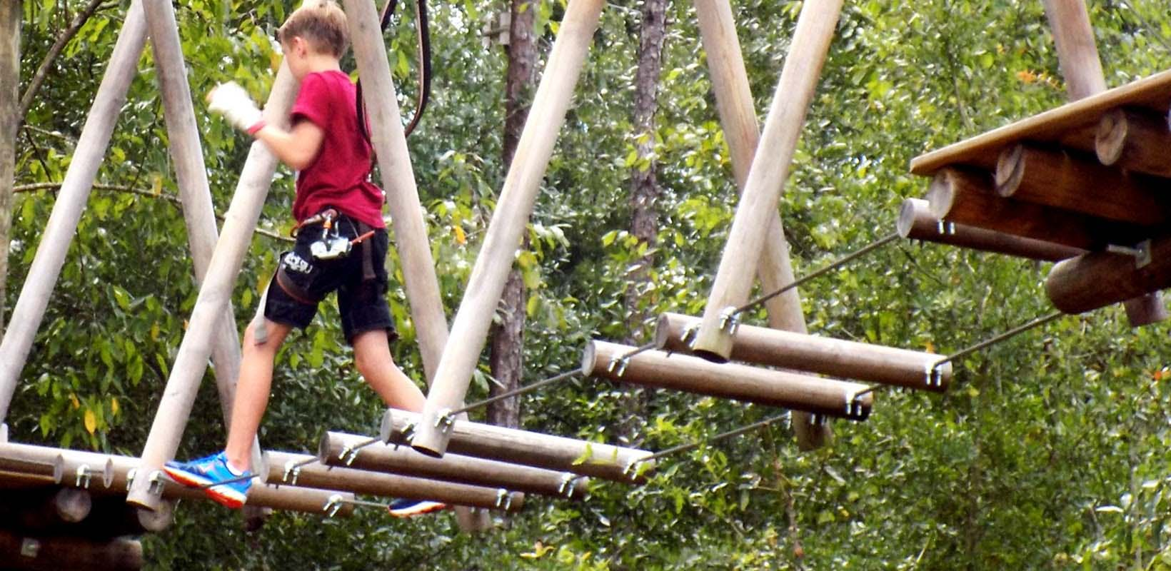 Tickets to Tree Trek Orlando