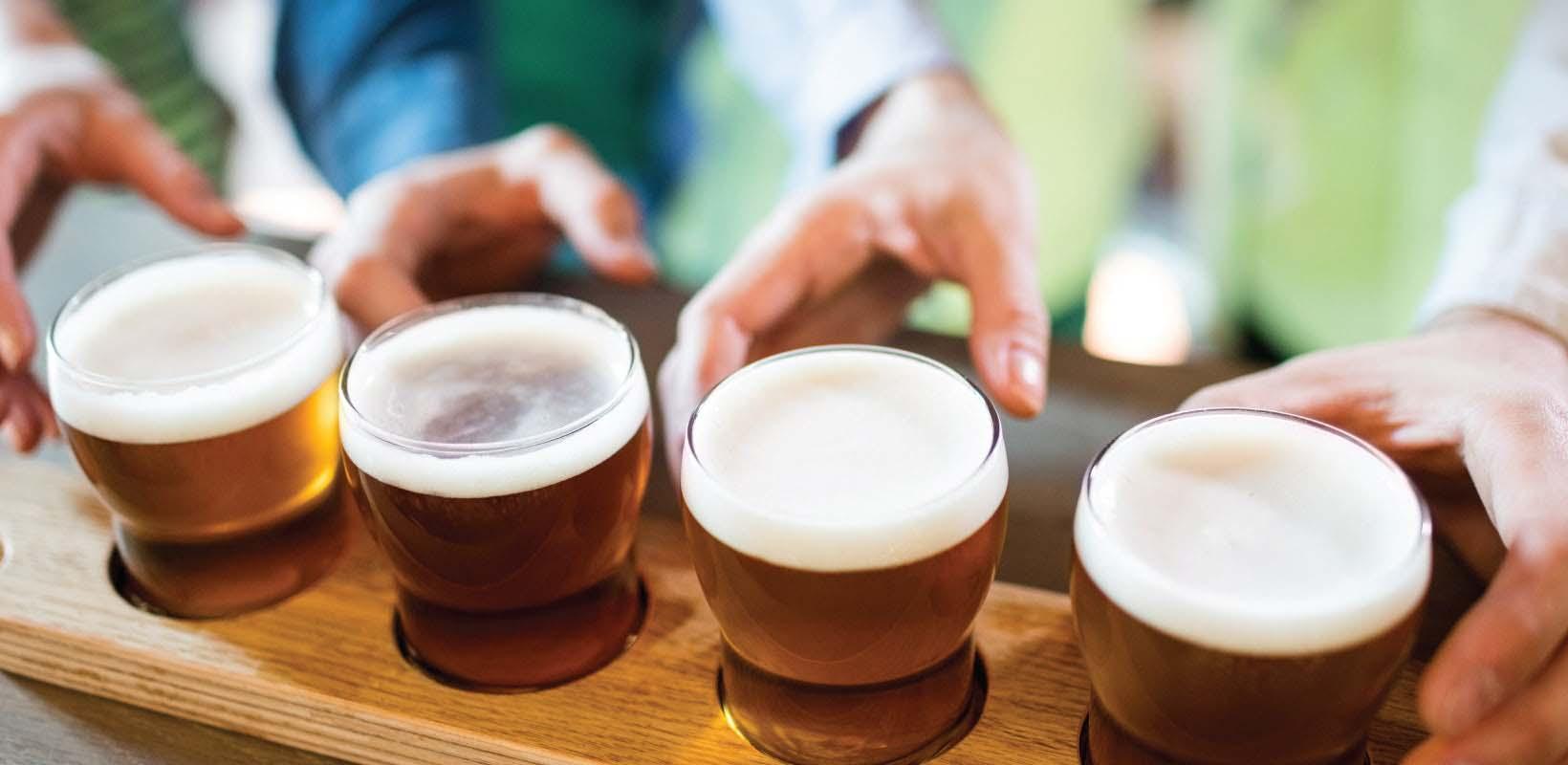 san diego craft brewery tour