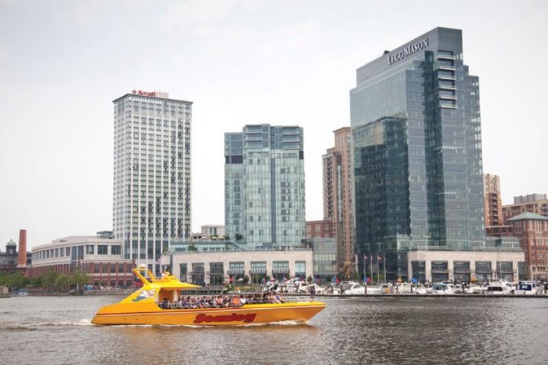 Seadog Baltimore