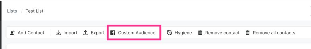 sendlane_facebook_custom_audiences