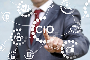 Virtual Chief Information Officer