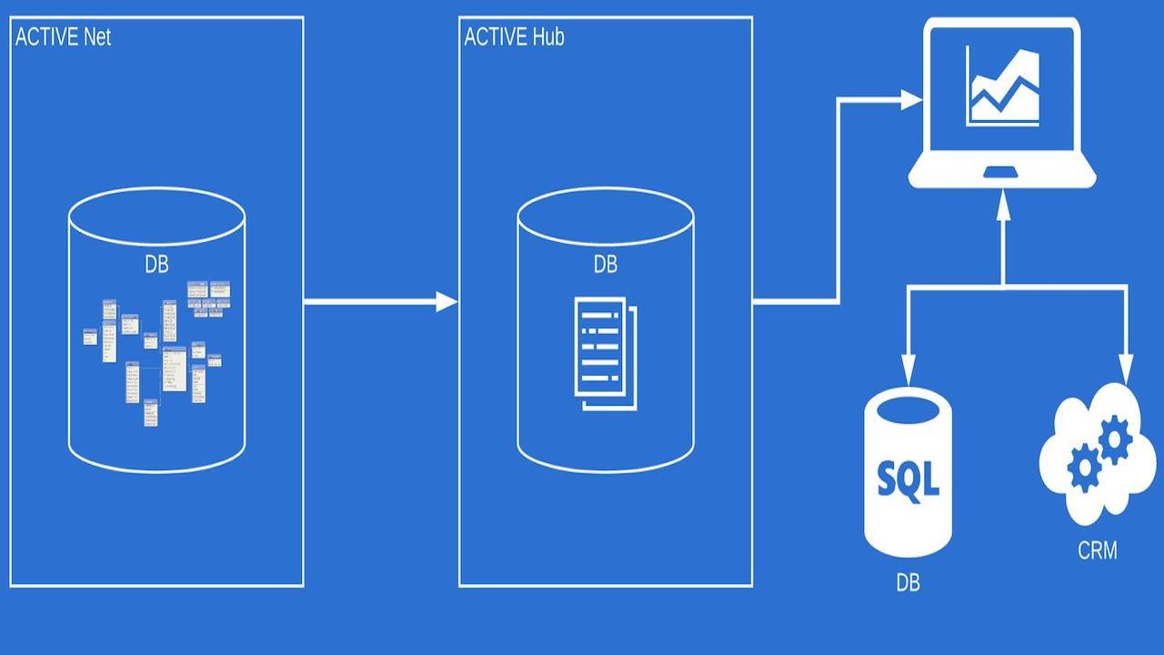 Diagram of ACTIVEBNet Data Hub