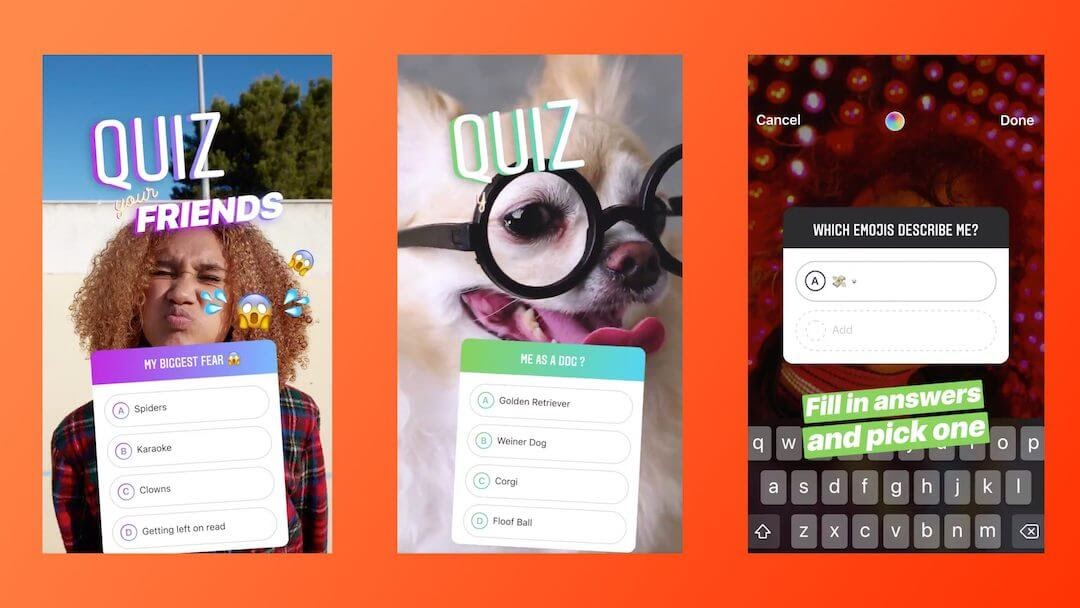 instagram story quiz dogs engagement three examples
