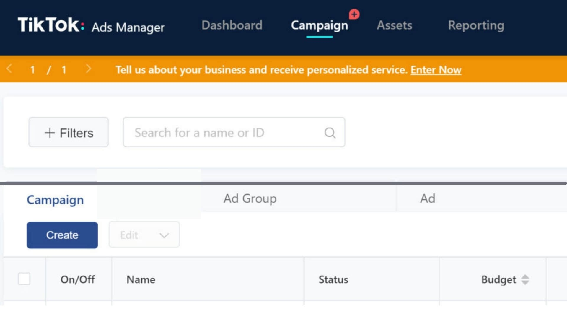 """Blue """"create"""" button under the word """"campaign"""" in TikTok Ads Manager interface"""