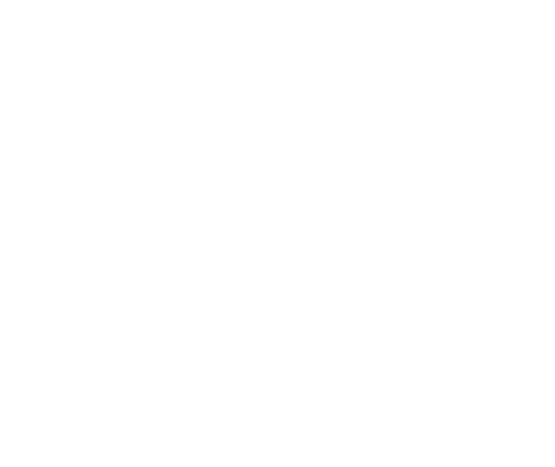 Shark Wheel