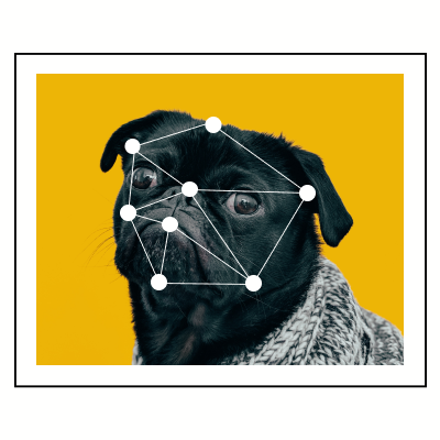Pug with dot connectors on his face.