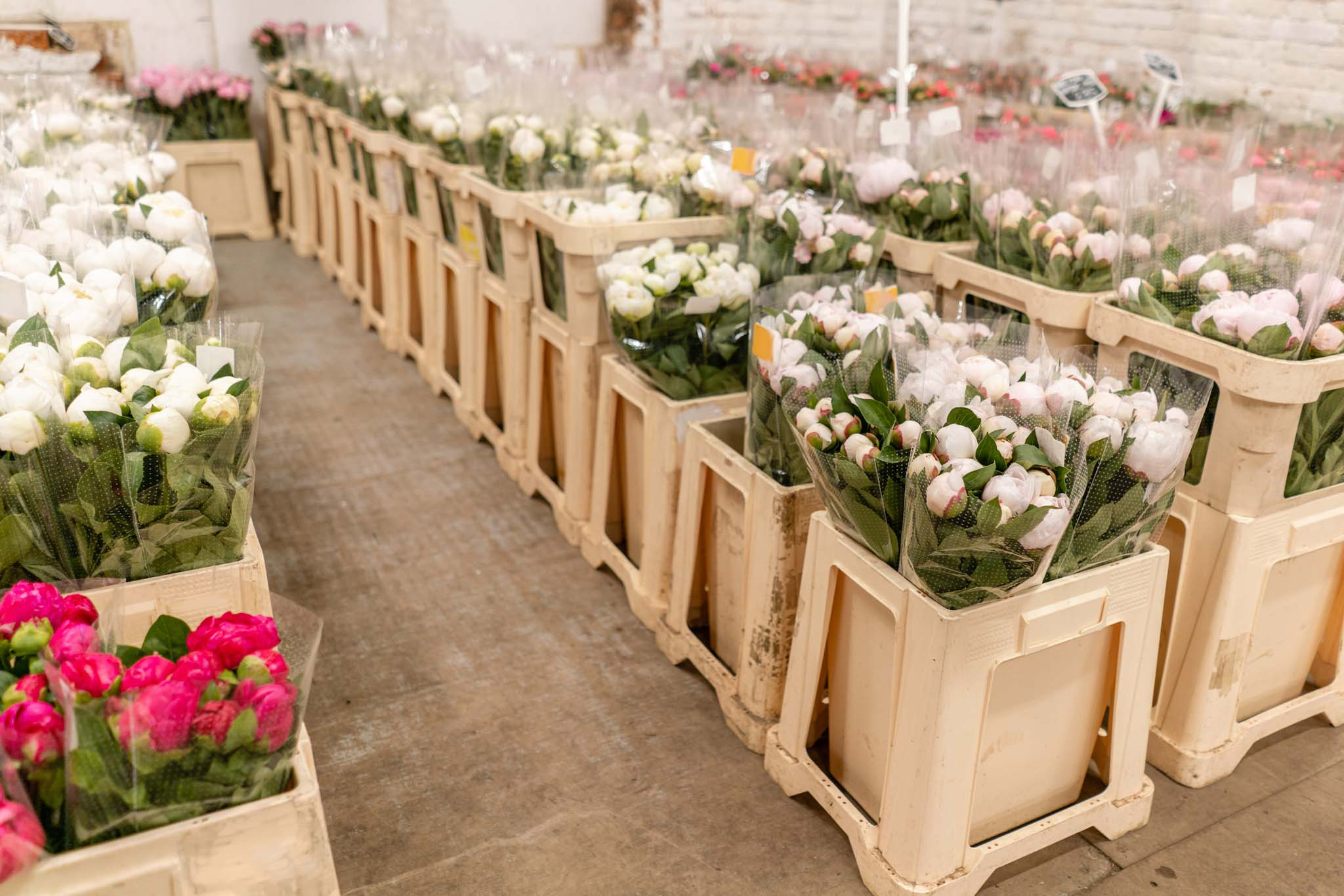Wholesale flowers in crates