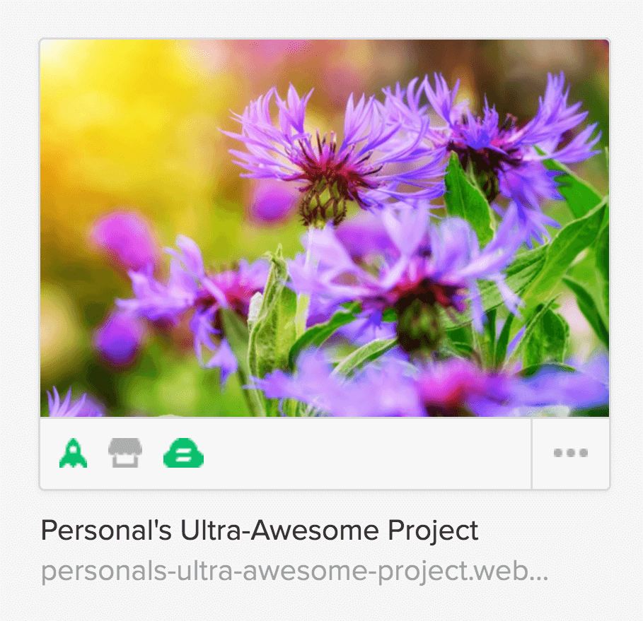 In the dashboard, each of your projects is represented with a thumbnail and some useful details about your project.
