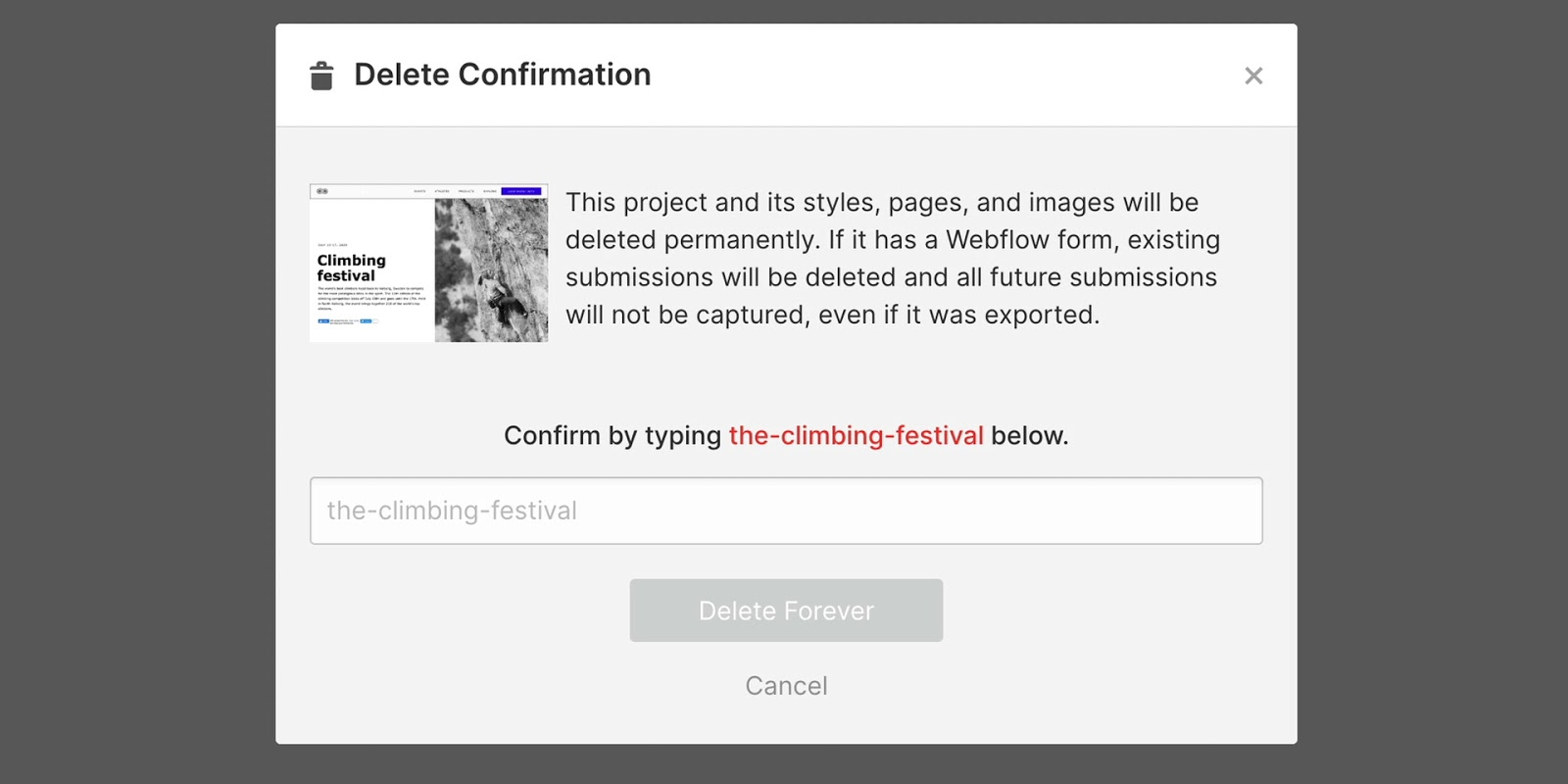 Type the project name to confirm deletion.